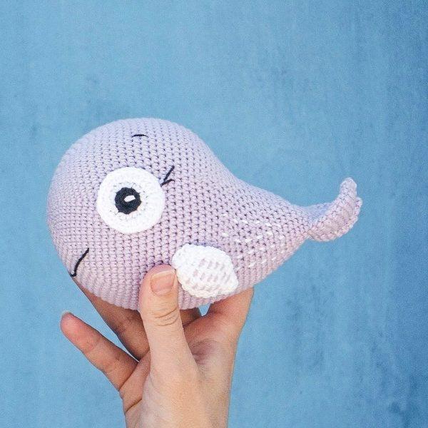 Fish & Ocean Animals